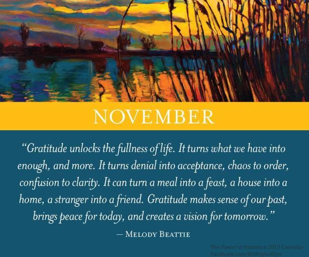 Nov gratitude